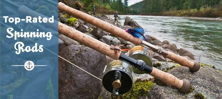 best spinning reels on the market